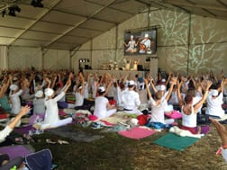 Yoga Festival 2014